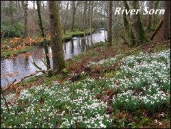 River Sorn
